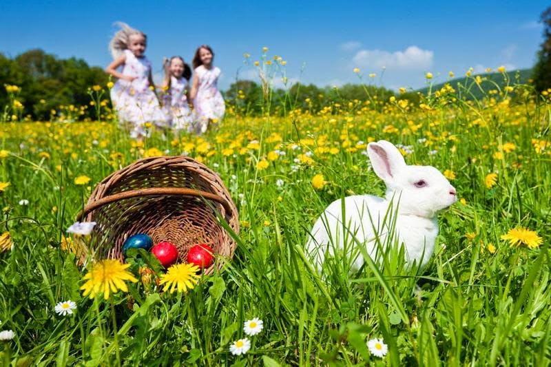happy easter 2015 greetings wallpapers