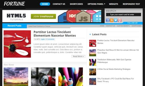 fortune wordpress adsense optimized theme
