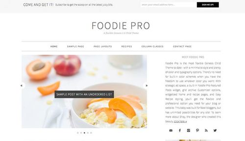 foodie pro child theme