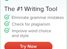 grammarly grammar checker tool