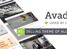 avada seo friendly theme