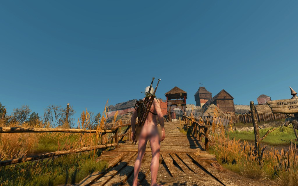 Nude Mod for Witcher 3: How You Can Make Geralt, Ciri and Other